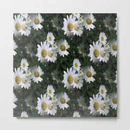 Many Daisies Metal Print