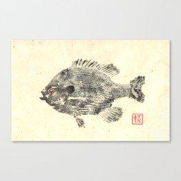 Bluegill 1 Canvas Print