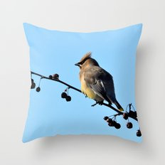 Waxwing on a Winter's Day Throw Pillow