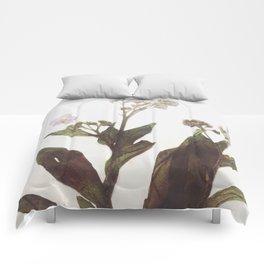 Leaf & Floral Comforters