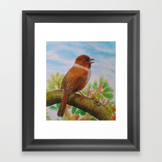 A Brown Bird Framed Art Print