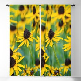 Yellow Coneflower Blackout Curtain