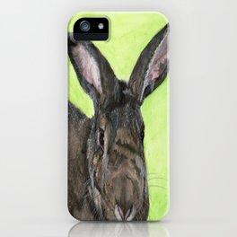 Tango the rescue rabbit iPhone Case