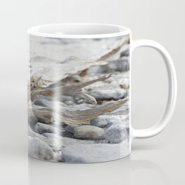 Driftwood and Beach Rocks Coffee Mug