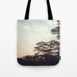 the faint sunset Tote Bag