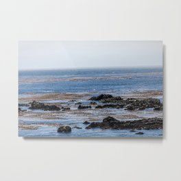 Moonstone Beach Metal Print