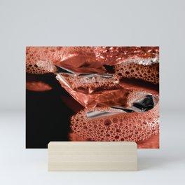 Coral Camarón   Abstract Photography Mini Art Print