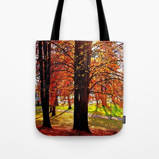 Autumn sunshine Tote Bag