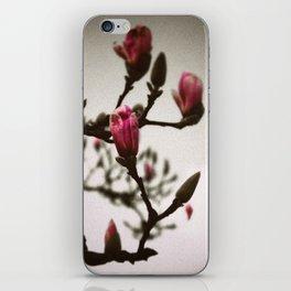 Vintage Tulip Tree iPhone Skin