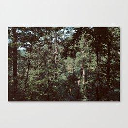 Forest Escape (Tivoli Park) Canvas Print