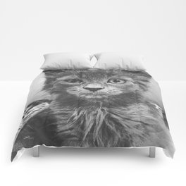 What? Comforters
