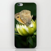 predator iPhone & iPod Skins featuring PREDATOR by Miguel Angelo