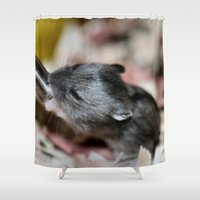 hamster Shower Curtains featuring Tiny Hamster by IowaShots