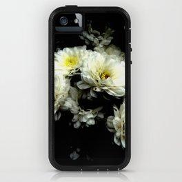 Mandolin iPhone Case