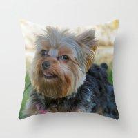 yorkie Throw Pillows featuring Little Yorkie by IowaShots