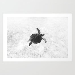 180831-5192 Art Print