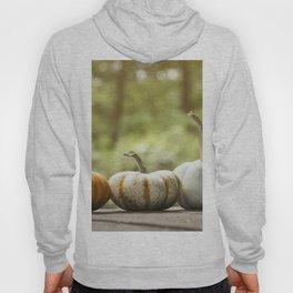 Fall pumpkins, harvest decor Hoody