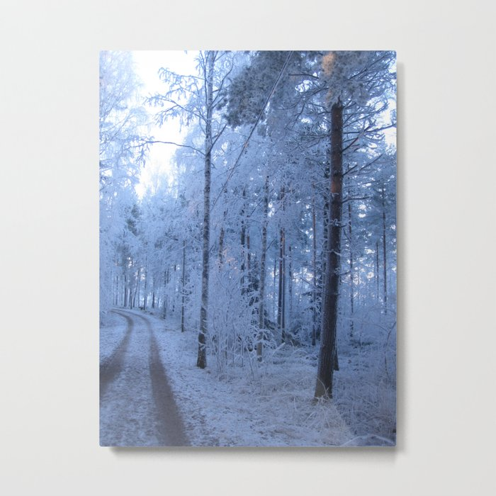 Frosty blue forest path Metal Print