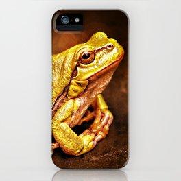 The InFocus Happy Frog Collection III iPhone Case