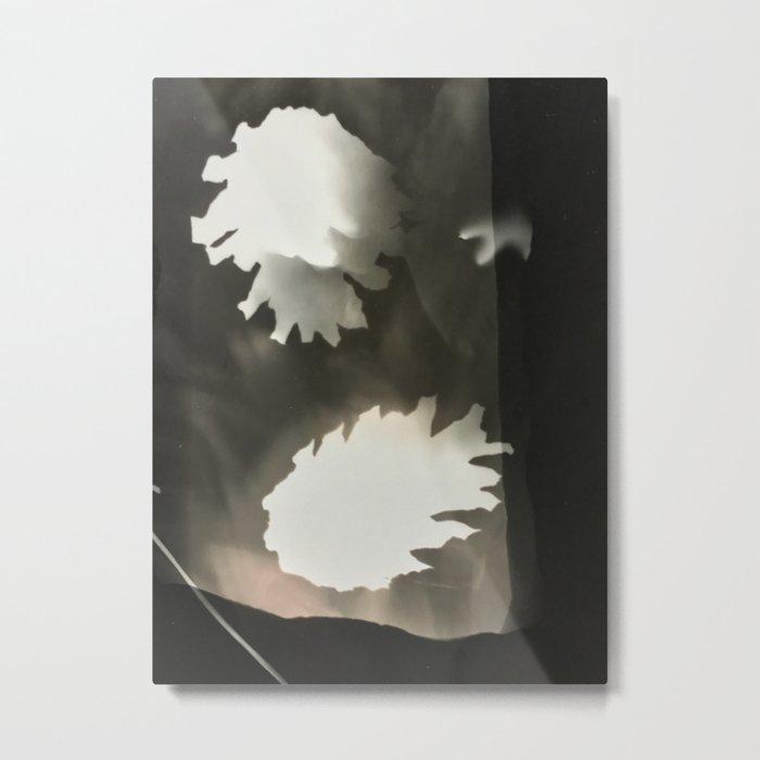 Sepia Pine Cones, Metal Print