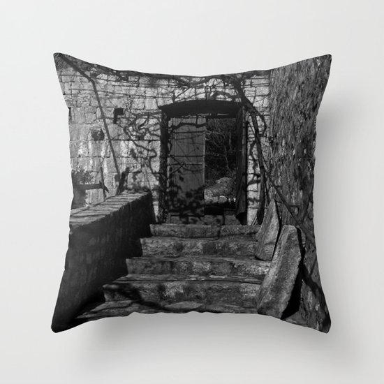 Passage Out Throw Pillow