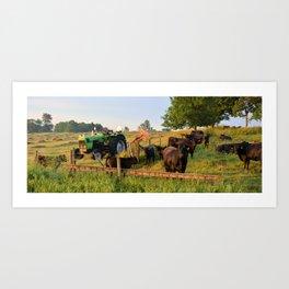 Deutz D 6807 Art Print