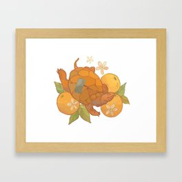 Anaranjado Framed Art Print
