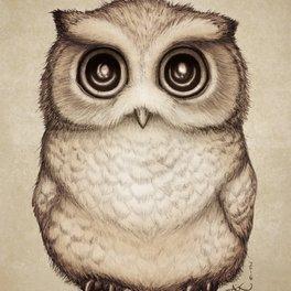 Notebook - The Little Owl - River Dragon Art