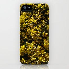 Flower bomb iPhone Case