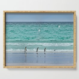 Falkland Island Seascape with Penguins Serving Tray