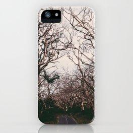 Barren Lands iPhone Case