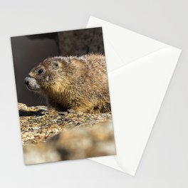 Two Marmots At Smith Rock Stationery Cards