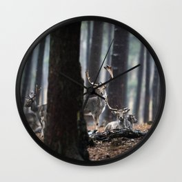 Fallow deer buck Wall Clock