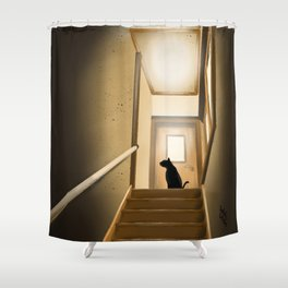 On the stairs Shower Curtain