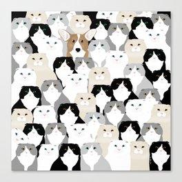 Cats and Dog Leinwanddruck