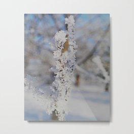 Snow crystal Metal Print