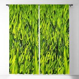 Green Grass Blackout Curtain