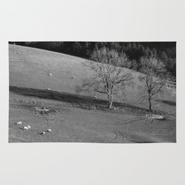 Grazing sheep and trees. Derbyshire, UK. Rug