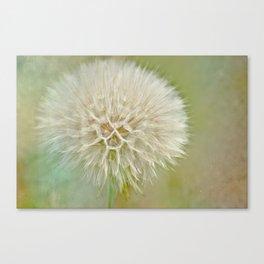 Dandelion Daydream Canvas Print