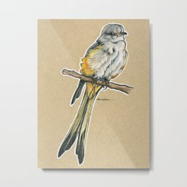 State Bird Series: Oklahoma - Scissor-tailed Flyc*tch*r  Metal Print