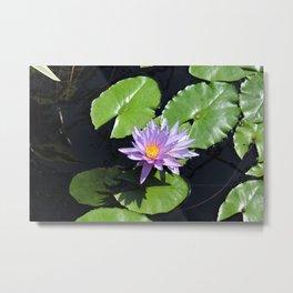 Pink Lotus Flower on Lily Pads Metal Print