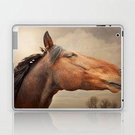 Red Rising Laptop & iPad Skin