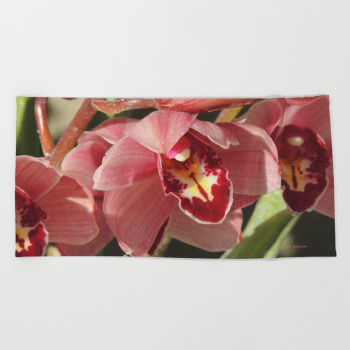 One Orchid on a Line Beach Towel