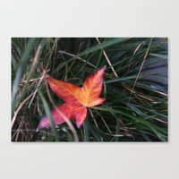 lonely Canvas Prints featuring lonely by littlesilversparks