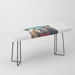 Funny Bear Illustration Bench