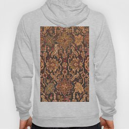 Floral Medallion IV // 18th Century Colorful Blue Lime Green Pink Sapphire Plum Burlap Brown Pattern Hoody