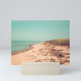 Lake Michigan Shoreline Sandy Beach Coast Water MI Mini Art Print