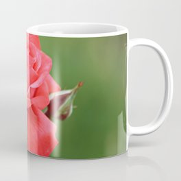 Pink Rose Flower and Buds Coffee Mug