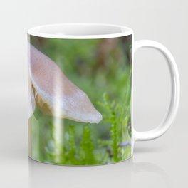 Tiny Fungi. Coffee Mug