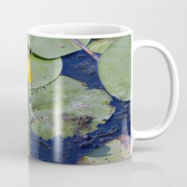 Water lilies float on water with lily flowers Coffee Mug
